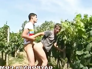 Suck My Grapes